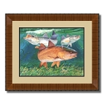 Guy Harvey Chums with frame