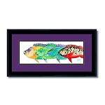 Guy Harvey Parrot heads with frame