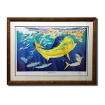 Guy Harvey Dolphin Oasis with frame