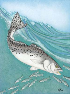 Kim Mosher Specktacular Trout Art Print Limited Edition