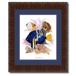 Guy Harvey Angel Reef with frame